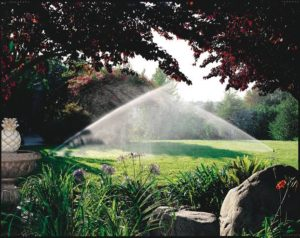 Residential Irrigation Greenside